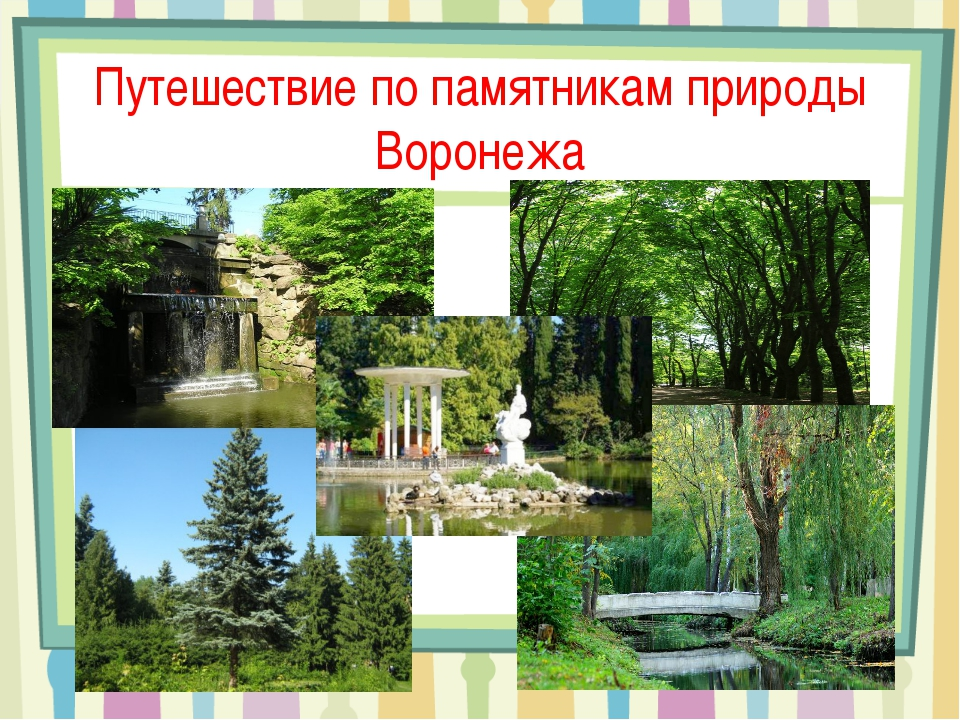 Путешествие по памятникам природы Воронежа