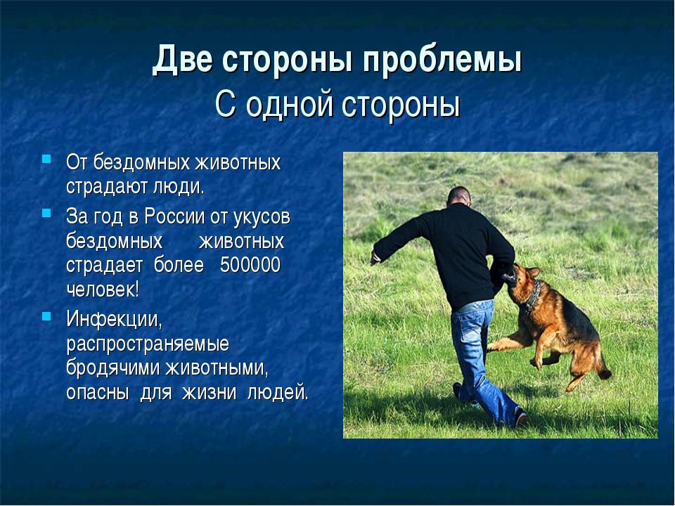 Две стороны проблемы С одной стороны От бездомных животных страдают люди. За...