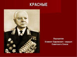 КРАСНЫЕ Ворошилов Климент Ефремович – маршал Советского Союза