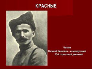 КРАСНЫЕ Чапаев Василий Иванович – командующий 25-й стрелковой дивизией