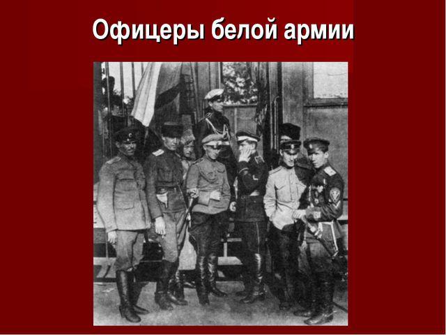 Офицеры белой армии