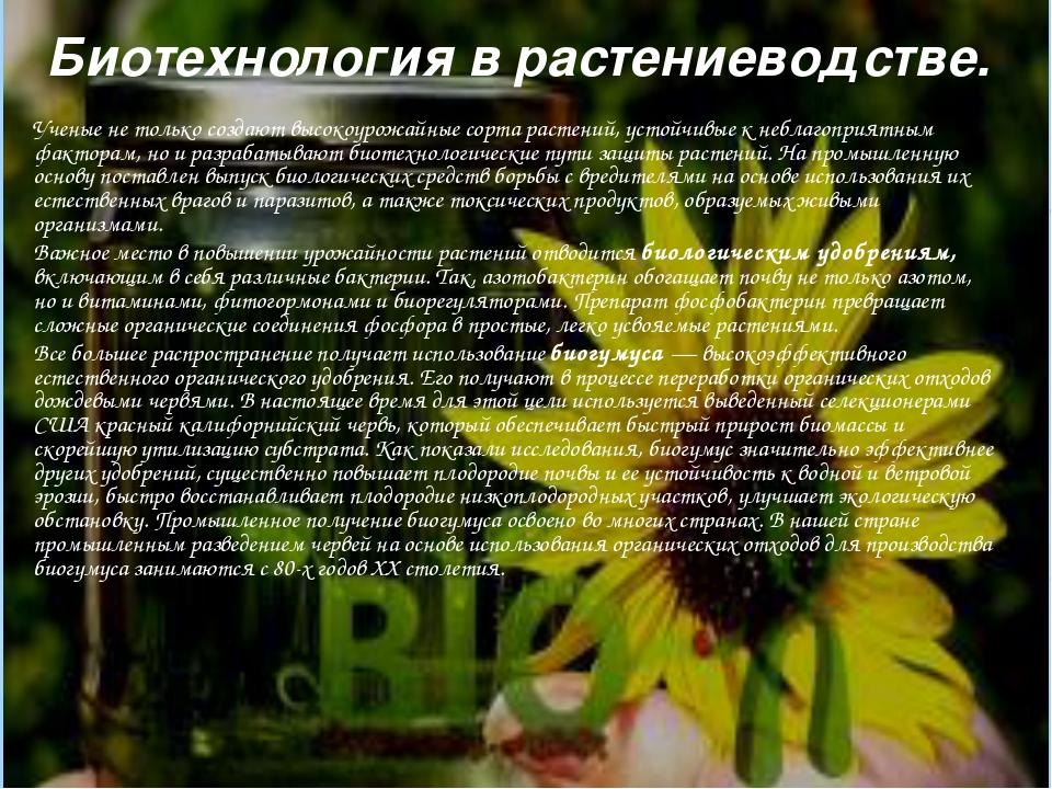 Биотехнология в растениеводстве. Ученые не только создают высокоурожайные сор...