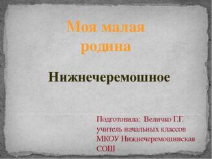 Подготовила: Величко Г.Г. учитель начальных классов МКОУ Нижнечеремошинская С