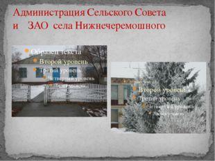 Администрация Сельского Совета и ЗАО села Нижнечеремошного