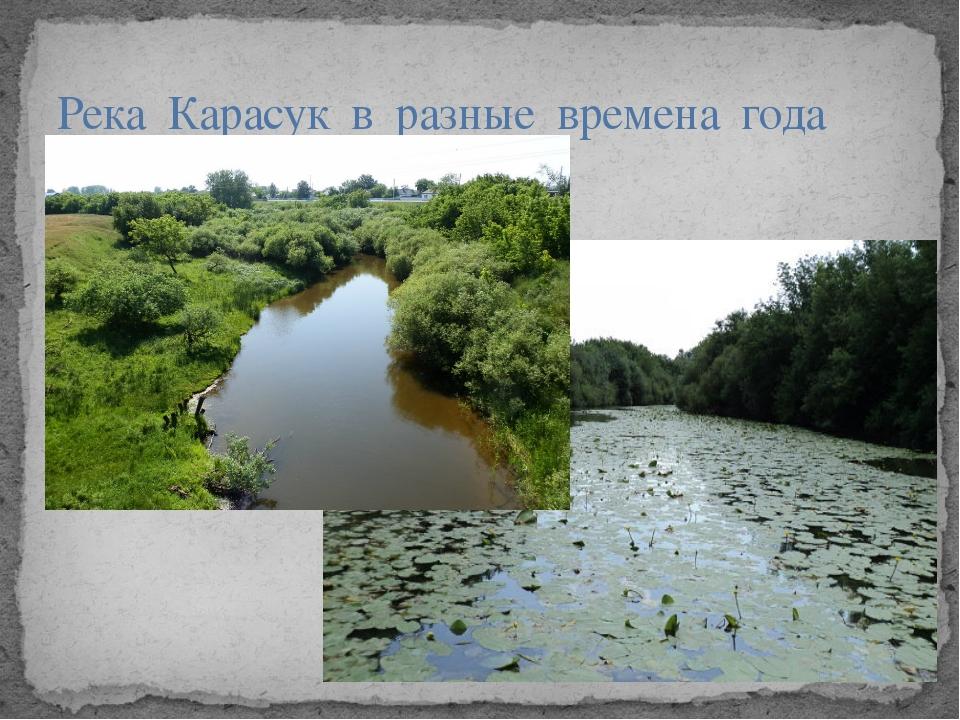 Река Карасук в разные времена года