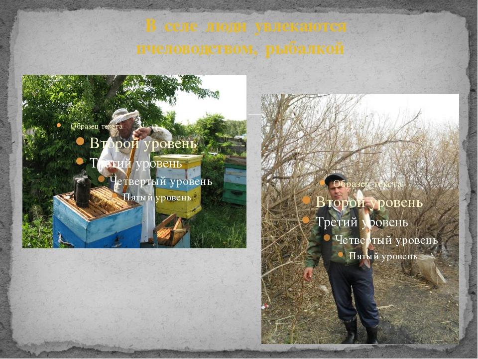 В селе люди увлекаются пчеловодством, рыбалкой