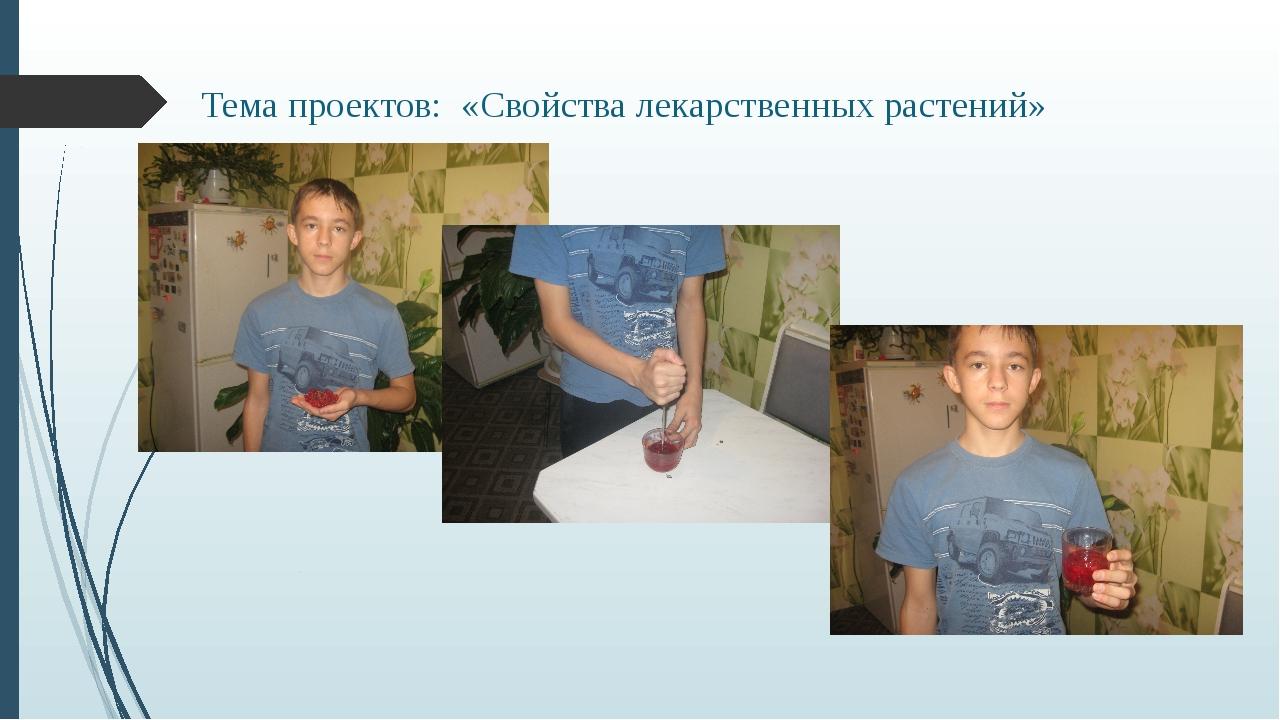 Тема проектов: «Свойства лекарственных растений»