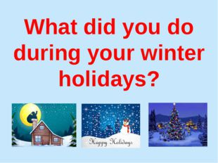 What did you do during your winter holidays?