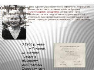 Очима відомого українського поета, журналіста і літературного критика, багат