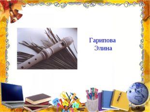 Гарипова Элина