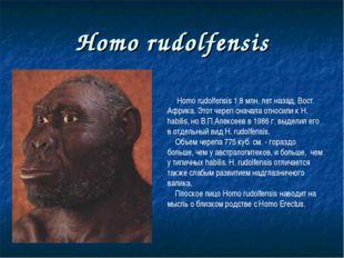 Homo rudolfensis Homo rudolfensis 1.8 млн. лет назад, Вост. Африка. Этот чере