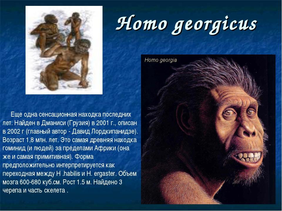 Homo georgicus Еще одна сенсационная находка последних лет. Найден в Дманиси...