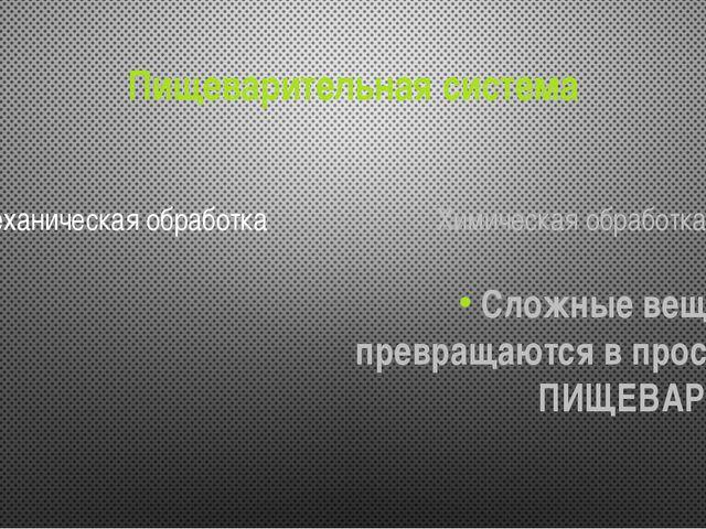 Пищеварительная система Механическая обработка Химическая обработка Сложные в...