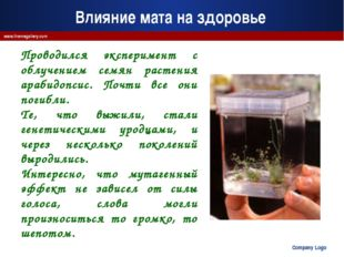 Company Logo www.themegallery.com Проводился эксперимент с облучением семян р
