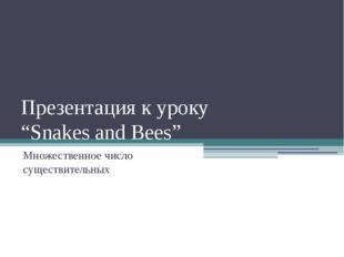 """Презентация к уроку """"Snakes and Bees"""" Множественное число существительных"""