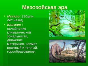 Мезозойская эра Начало: 230млн. лет назад Климат : ослабление климатической з