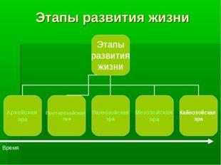 Этапы развития жизни Время