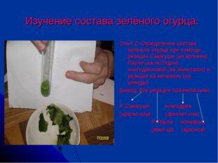 Изучение состава зелёного огурца. Опыт 2: Определение состава зелёного огурц