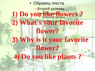 1) Do you like flowers ? 2) What`s your favorite flower? 3) Why is it your fa