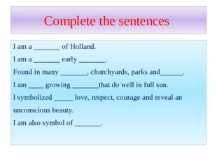 Complete the sentences I am a _______ of Holland. I am a _______ early ______