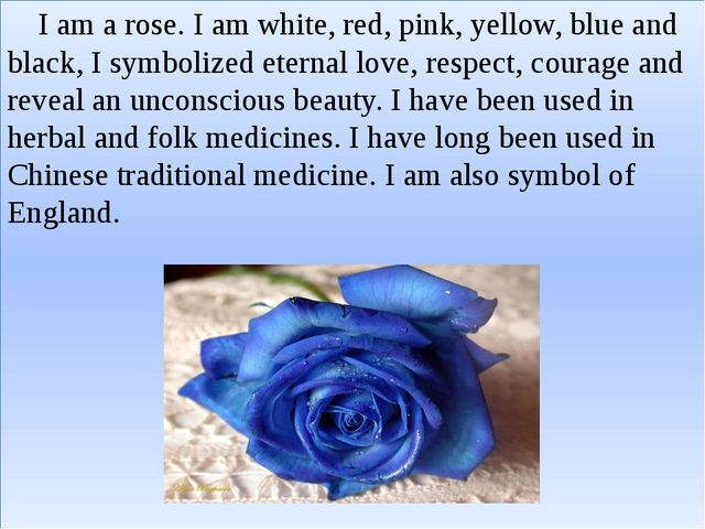 I am a rose. I am white, red, pink, yellow, blue and black, I symbolized ete...