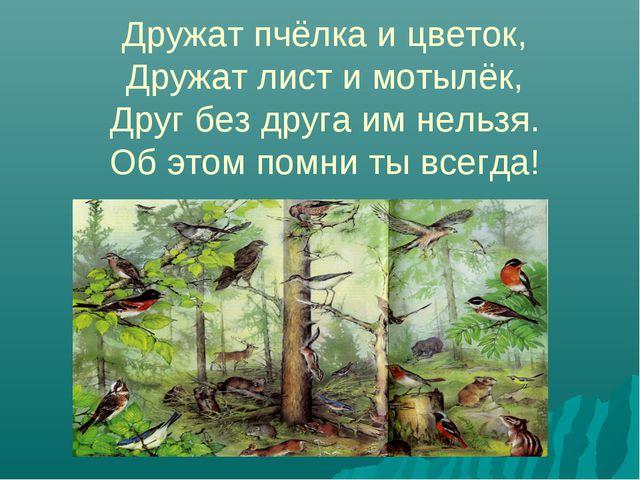 Дружат пчёлка и цветок, Дружат лист и мотылёк, Друг без друга им нельзя. Об...