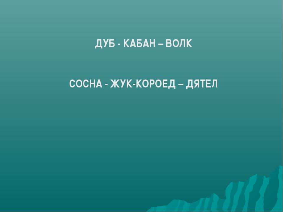 ДУБ - КАБАН – ВОЛК СОСНА - ЖУК-КОРОЕД – ДЯТЕЛ