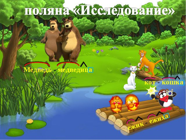 ежик - ежиха Медведь - медведица кот - кошка
