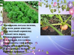 Что морковь весьма полезна, Это всем давно известно. Этот вкусный корнеплод У