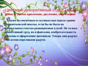 Цветочно-декоративный отдел площадь – 100кв.м. Цветы однолетние, двулетние, м