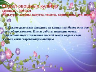 Отдел овощных культур Площадь – 300 кв,м Культуры: огурцы, капуста, томаты, к