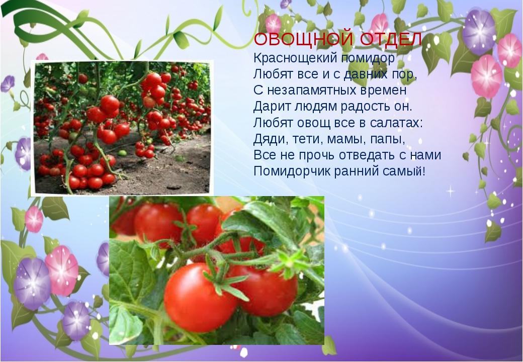 ОВОЩНОЙ ОТДЕЛ Краснощекий помидор Любят все и с давних пор, С незапамятных вр...