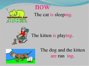 The cat is sleeping. The kitten is playing. The dog and the kitten are runni