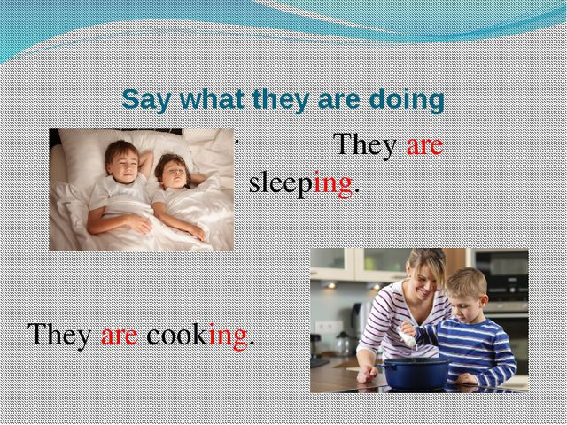 Say what they are doing They are sleeping. They are cooking.