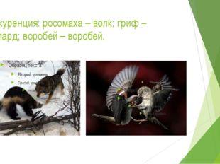 Конкуренция: росомаха – волк; гриф – леопард; воробей – воробей.