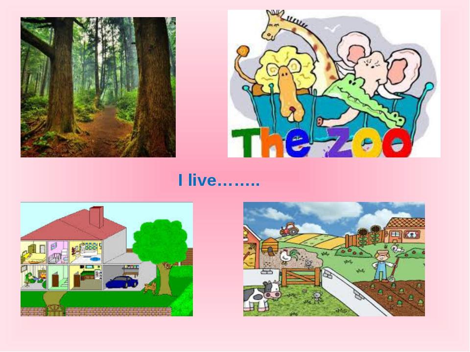 I live……..
