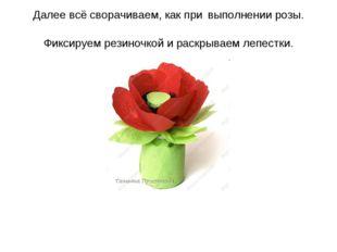 Далее всё сворачиваем, как при выполнении розы. Фиксируем резиночкой и раскры