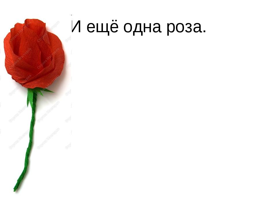 И ещё одна роза.