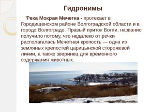 . Гидронимы Река Мокрая Мечетка - протекает в Городищенском районе Волгоградс