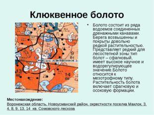 Клюквенное болото Болото состоит из ряда водоемов соединенных дренажными кана