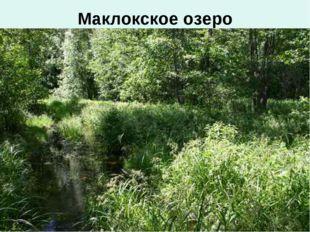 Маклокское озеро