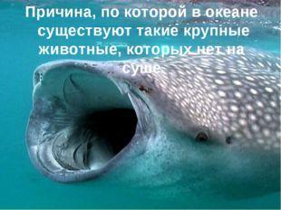 Причина, по которой в океане существуют такие крупные животные, которых нет н