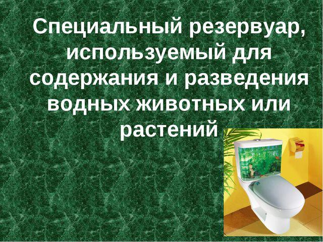 Специальный резервуар, используемый для содержания и разведения водных животн...