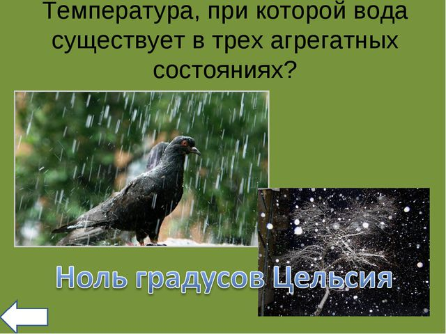Температура, при которой вода существует в трех агрегатных состояниях?
