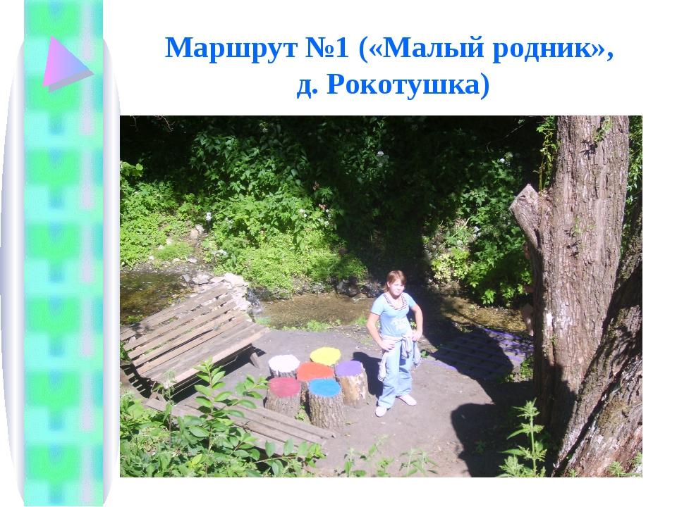 Маршрут №1 («Малый родник», д. Рокотушка)