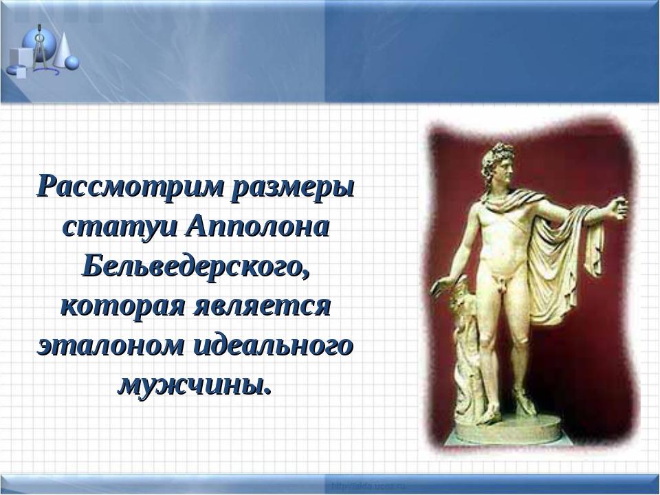 Рассмотрим размеры статуи Апполона Бельведерского, которая является эталоном...