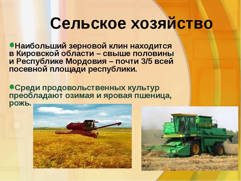 Сельское хозяйство Среди продовольственных культур преобладают озимая и ярова...