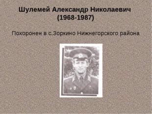Шулемей Александр Николаевич (1968-1987) Похоронен в с.Зоркино Нижнегорского