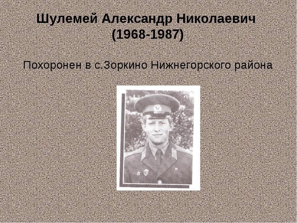 Шулемей Александр Николаевич (1968-1987) Похоронен в с.Зоркино Нижнегорского...