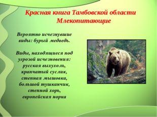 Вероятно исчезнувшие виды: бурый медведь. Виды, находящиеся под угрозой исче
